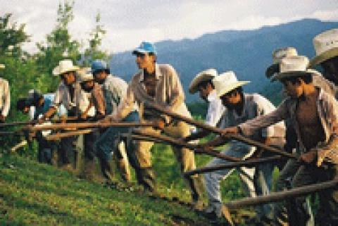 MESA DE ORGANIZACIONES CIVICAS Y POPULARES DE ARAUCA COMUNICADO 01 PARO NACIONAL AGRARIO Y POPULAR INDEFINIDO