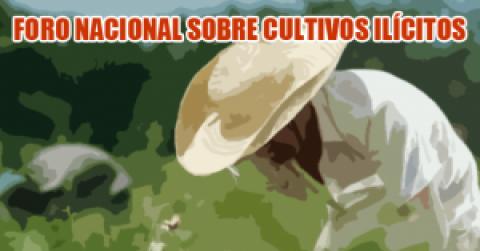 Abre hoy en Colombia foro nacional sobre cultivos ilícitos