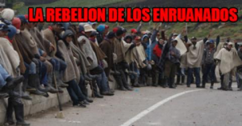 LA REBELION DE LOS ENRUANADOS