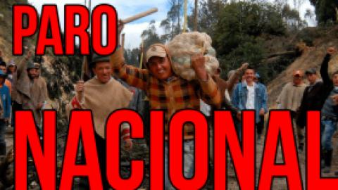 Colombia: El paro nacional agrario, saltos cualitativos del movimiento social