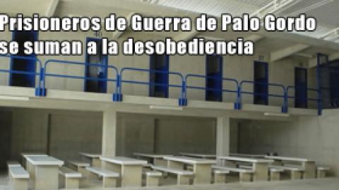Prisioneros de Guerra de Palo Gordo se suman a la desobediencia