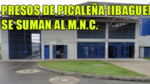 PRESOS DE PICALEÑA SE SUMAN AL M.N.C.