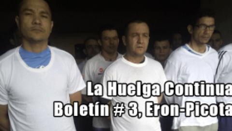 La Huelga Continua-Boletín # 3-Eron-Picota