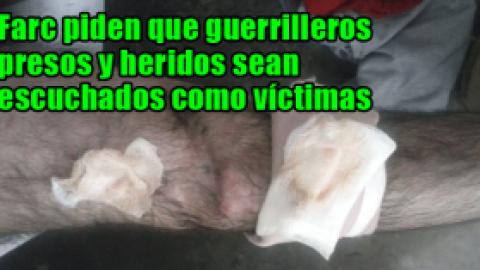 Farc piden que guerrilleros presos y heridos sean escuchados como víctimas