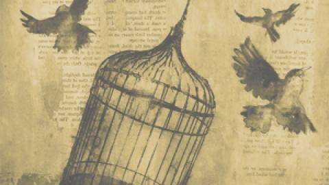 Carta abierta de los prisioneros políticos y de guerra a la opinión publica