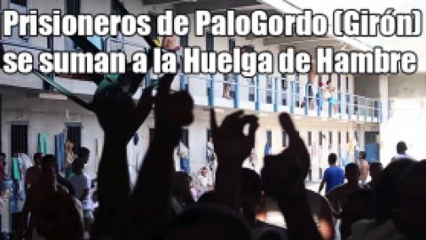 Prisioneros de PaloGordo (Girón) se suman a la Huelga de Hambre