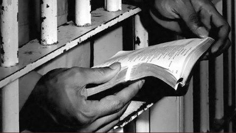 Crece la lista de presos políticos en Estados Unidos